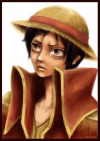 One Piece. Luffy by HosomiAme
