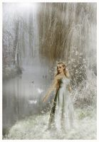 Collaboration: The Willow Elf by Foxfires