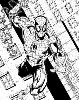 SPIDEY COMMISSION by FanBoy67