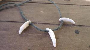 Coyote Tooth Hunter Necklace by Troll-Blood