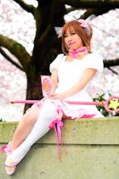 CCS cos: Sakura Sakura by xWish