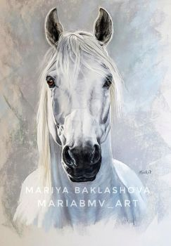 Andalusian stallion by Mariya-art