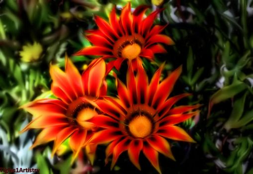 Flowers From Fairie Land.... by Tigles1Artistry