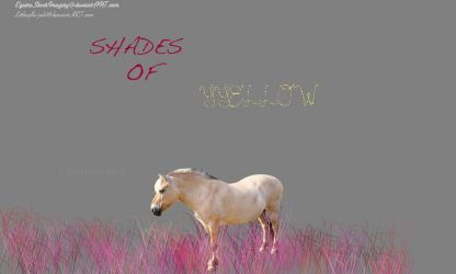 SHADES OF YELLOW - MANIP by LittleApple-Jack