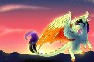 {COMM} Flying at the sunset by SunshineFiddle
