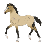 N2649 Padro Foal Design for SammieAsMagPie by casinuba
