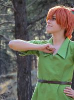 Peter Pan - A Salute to Neverland by PoisonousRationality