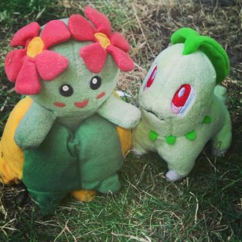 Two Grass Pokemon by CGholy