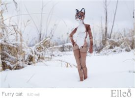 FurryCat 05 by leo3dmodels