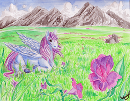 Pegasus Valley For Amber-Crescentmoon by StickFreeks