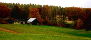 autumn countryside. by panna-phi