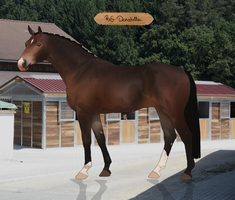 RvS Donatella UH by RvS-RiverineStables