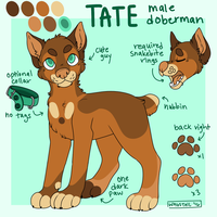 Tate Ref by wagstail