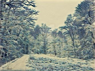 Snowscape forest by Pappart