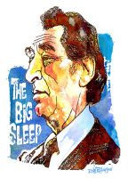 The Big Sleep by wooden-horse