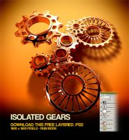 Isolated Gears by csuz