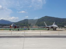 F-35A and F-22A by Rodd929