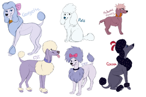 Cartoon Poodle Sketches by Pinky-Poodle