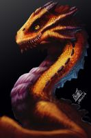 Young Dragon by TehChan