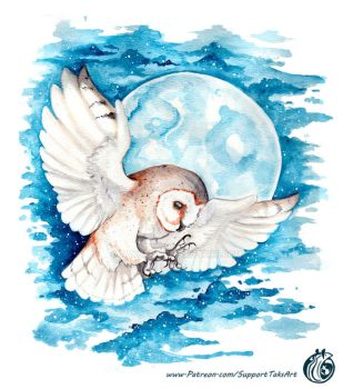 Night Owl - Watercolor by TaksArt