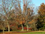 Autumn Days by Michies-Photographyy