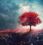 The Arrival of Colours by Aeternum-designs
