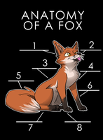 Anatomy of a Fox (Draft) by artwork-tee