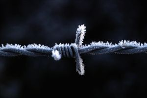 Frozen Ironwire by LostImagesProject