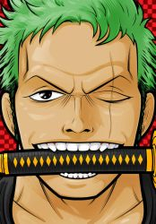 Roronoa Zoro by Thuddleston