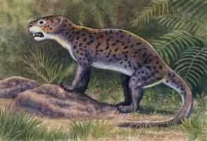Patriofelis ferox by WillemSvdMerwe