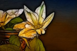 Stained Glass Flower 1 by Moonchilde-Stock