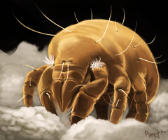 DAY 57. Micro Photo Study (35 Minutes) by Cryptid-Creations