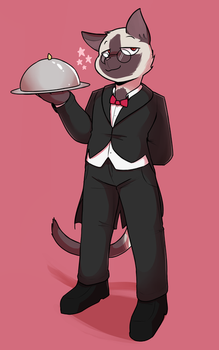butler cat  by Sonokido