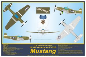 P-51B Mustang 'Ding Hao,' Major James Howard by sfreeman421