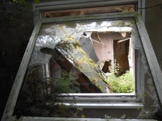 View through the broken window by tonks204