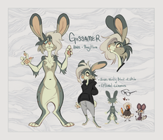 fursonyyy ref by miraclespout