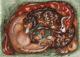 dragon cats by Laterne-Magica