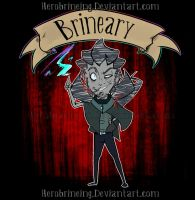 DS Brineary by Dierinks