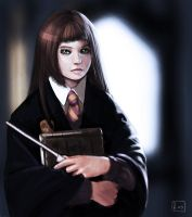 HP Speed Paint by Soilworker06