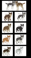 Semi-Realistic Wolf Litter Adoptable 27 by Shiverpelts-adopts