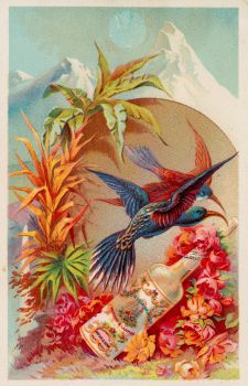 Victorian Advertising - Florida Water by Yesterdays-Paper
