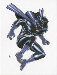 Black Panther by NeilRiehle