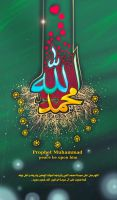Muhammad the Messenger of God by taoufiq