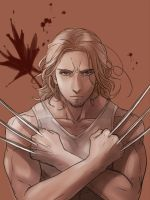 Wolverine [2p!Can APH] by RavenMushroom