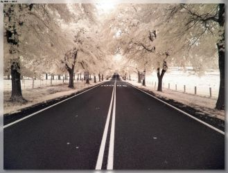 The Road To Tenterfield 1 by JohnK222