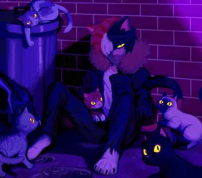 local alley cat by sorrysap