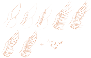 Wings :: Step-by-Step by MidnightDireWolf