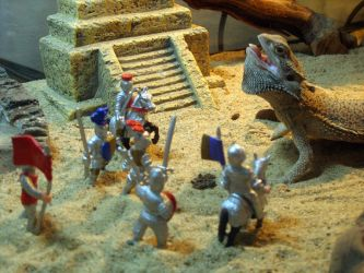 Attack of the Bearded Dragon by astomious