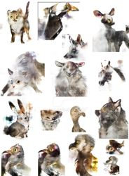 bunch o animals by sidca
