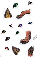 eyes, ears, and paws by thelunacy-fringe